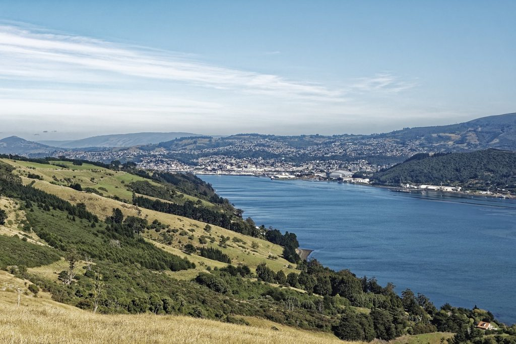 Dunedin - steden in nieuw-zeeland